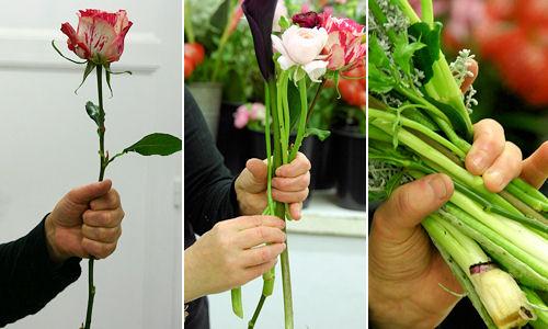 Les fiches techniques d 39 aquarelle for Bouquet de fleurs rond